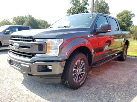 2019_Ford_F-150_XLT 4X4 SPORT_ Paris TN