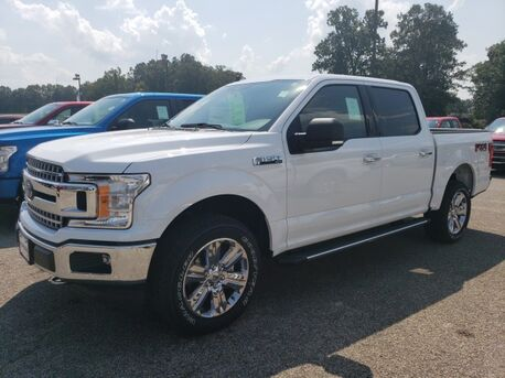2019_Ford_F-150_XLT FX4_ Paris TN