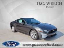 2019_Ford_Mustang_EcoBoost_ Hardeeville SC
