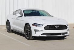 2019_Ford_Mustang_EcoBoost Premium_  TX