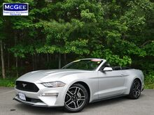 2019_Ford_Mustang_EcoBoost Premium Convertible_ Pembroke MA