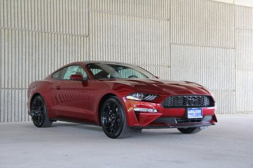 2019 Ford Mustang EcoBoost Premium Mineola TX 30352278