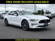 2019 Ford Mustang EcoBoost Watertown NY