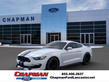 2019_Ford_Mustang_Shelby GT350_  PA