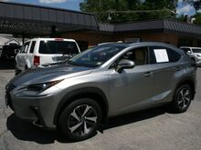 2019_Lexus_NX 300_Base_ Roanoke VA