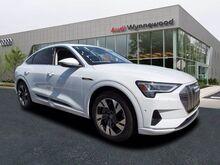 2020_Audi_e-tron_Premium Plus_ Philadelphia PA