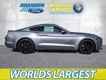 2020_Ford_Mustang_EcoBoost_ Tampa FL