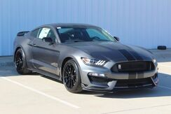 2020_Ford_Mustang_Shelby GT350_  TX