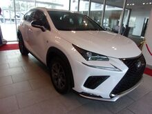 2020_Lexus_NX 300_F SPORT AWD WITH RED ROSSO LEATHER INTERIOR_ Charlotte NC