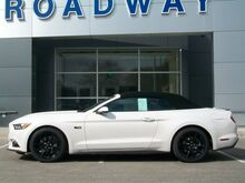 2017 Ford Mustang GT Premium Green Bay WI