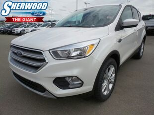 2017 Ford Escape SE Sherwood Park AB
