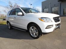 2015 Mercedes-Benz M-Class ML 350 Lexington KY