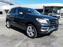 2014 Mercedes-Benz M-Class ML 350 Lexington KY