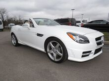 2014 Mercedes-Benz SLK-Class SLK250 Lexington KY