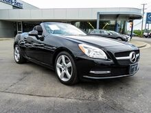 2013 Mercedes-Benz SLK-Class SLK 250 Lexington KY