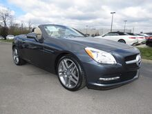 2015 Mercedes-Benz SLK-Class SLK250 Lexington KY
