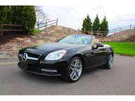 2015 Mercedes-Benz SLK SLK 250 Kansas City KS
