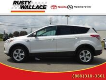 2014 Ford Escape SE 4X2 Morristown TN