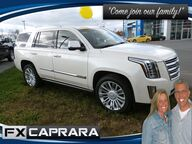 2015 Cadillac Escalade Platinum Watertown NY