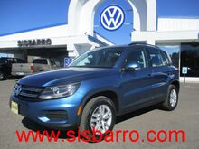 2017 Volkswagen Tiguan 2.0T S 4Motion Las Cruces NM
