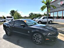 2013 Ford Mustang Shelby GT500 20th Anniversary Evansville IN