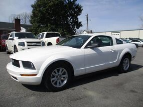 Ford Mustang Standard 2006