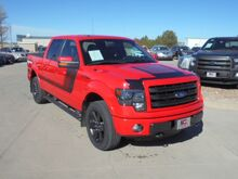 2014 Ford F-150 FX4 SuperCrew 5.5-ft. Bed 4WD Colby KS