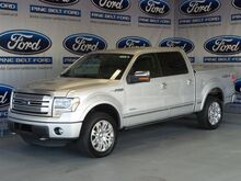2013 Ford F-150 Platinum Hattiesburg MS