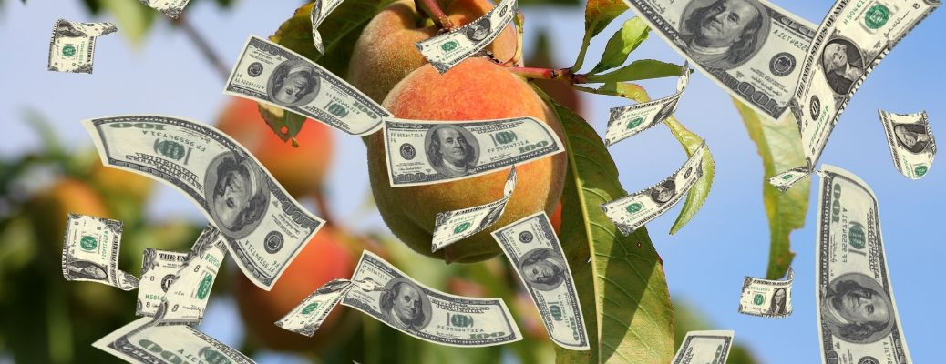 A variety of money rains down over a peach.