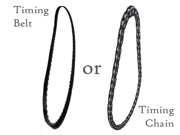 Chain vs Belt