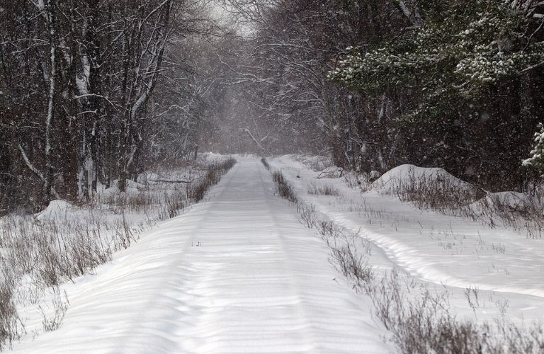 A winter trail covered in snow
