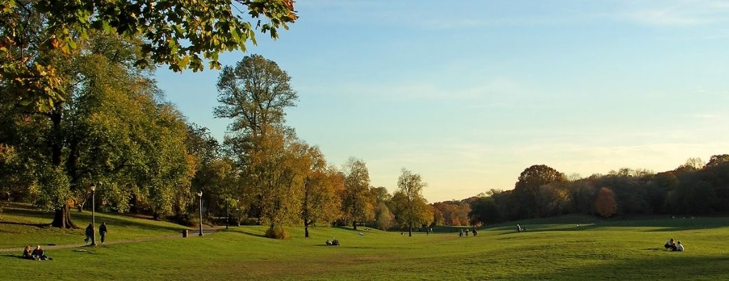 List of top 3 Parks in Raleigh, NC