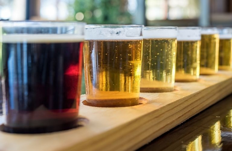 A row of beer glasses filled with beer
