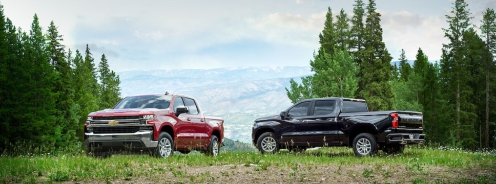 Exterior view of two 2019 Chevrolet Silverado 1500 models parked in a field