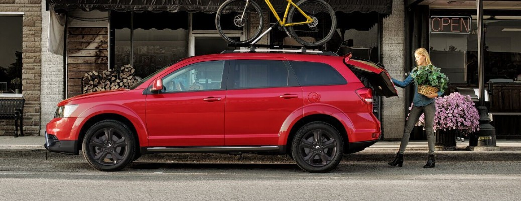 What are the Color Options of the 2020 Dodge Journey?