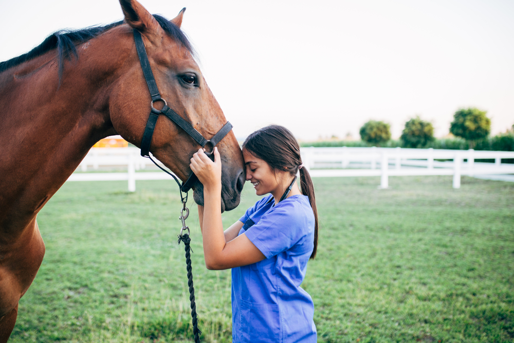 Local Spotlight: Hope Equine Rescue