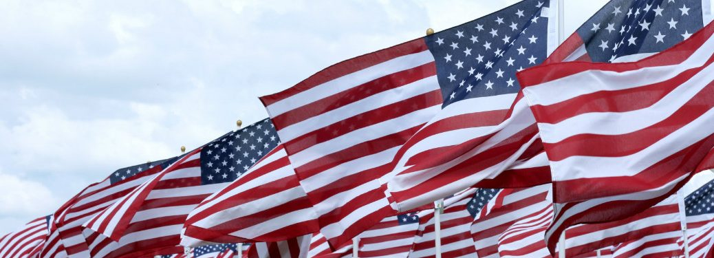 rows of american flags blowing together in the wind