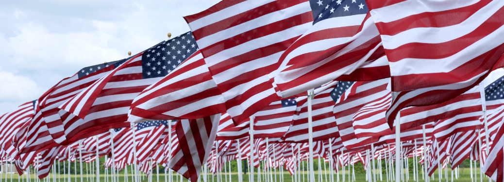 numerous american flags in line flapping in breeze