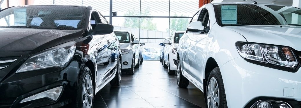 White and black cars inside of a dealership