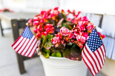 Flower pot with red flowers and two American flag decorations