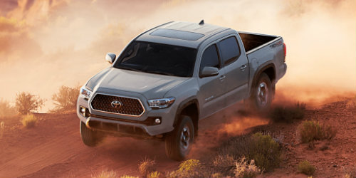 2018 Toyota Tacoma driving down dirt road with brushes surrounding