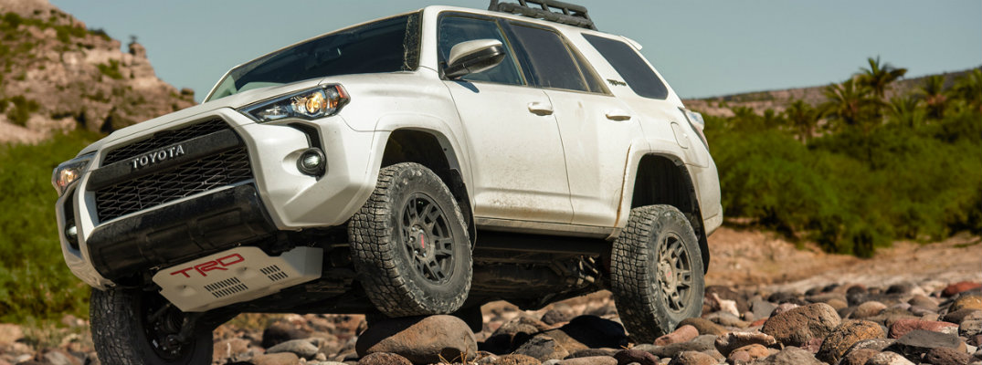 What are your color choices for the all-new 2019 4Runner?