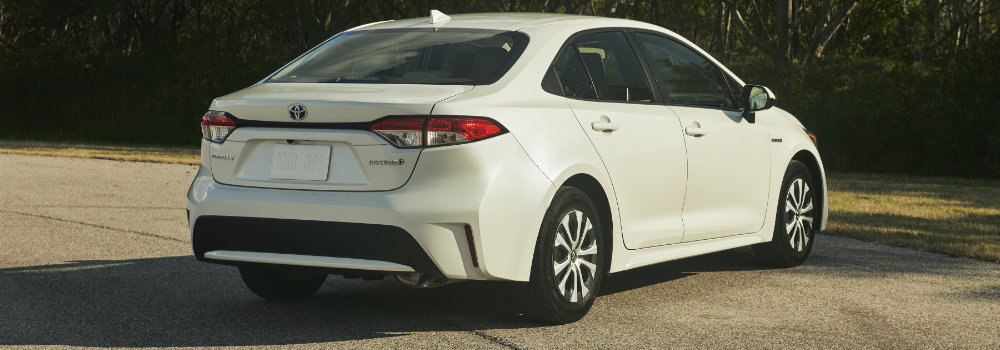 2020 Toyota Corolla parked in front of trees
