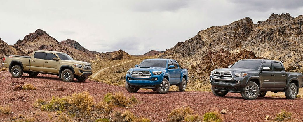 Color Options for the 2016 Toyota Tacoma at J. Pauley Toyota-Fort Smith AR-Three Toyota Tacoma Models on the Trail