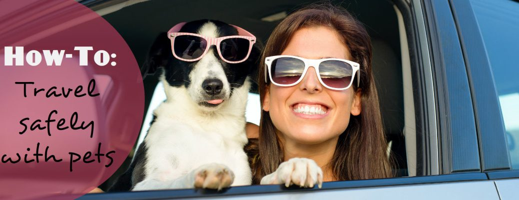 Safely Travel with Pets