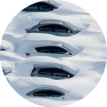 Cars covered in snow in a lot