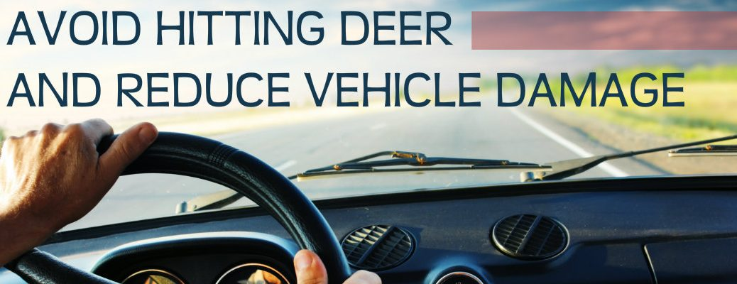 tips to avoid deer and reduce vehicle damage