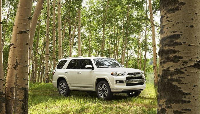 2019 Toyota 4Runner parked in a forest