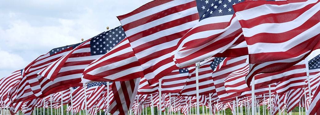 A large group of American flags waving in the wind