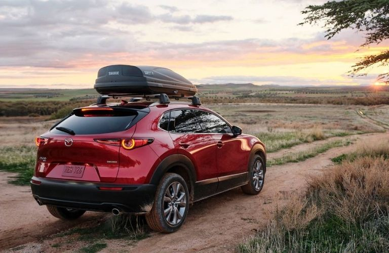 2021 Mazda CX-30 rear view in a field